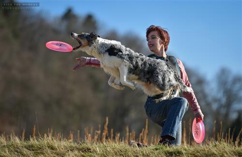 Dog Frisbee/Disc Dogging