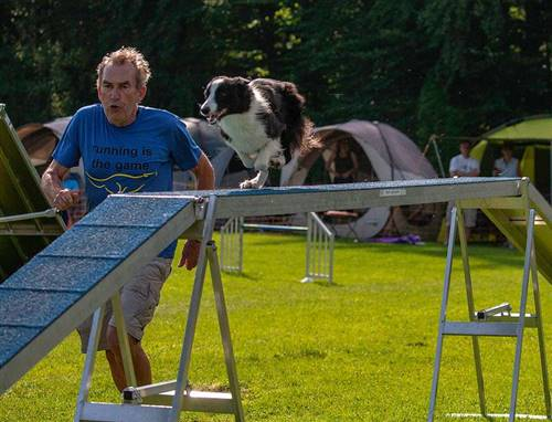 Agility Wochenende (Running Contacts )