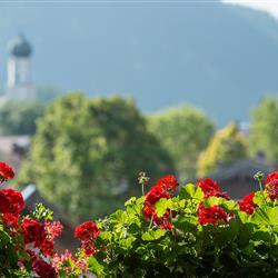 Imagebild - Blumen mit Hintergrund Ort Oberammergau