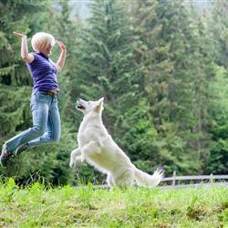 Frau beim Spielen mit Hund auf Wiese