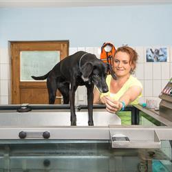 Christine Liebl mit Hund beim Training mit Unterwasserlaufband