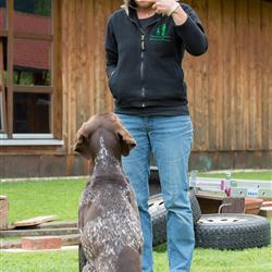 Kurse Hundeerziehung im Hundesporthotel Wolf
