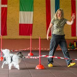 Frau mit Hund beim Crossdogging in der Hundesporthalle in Oberammergau