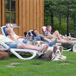 Frauchen mit Hunde beim Entspannen auf der Hundewiese - Hundehotel Wolf